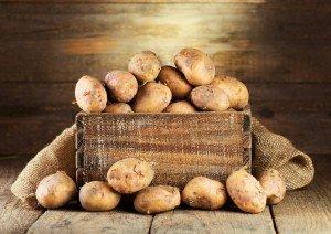 Отборные сорта картофеля