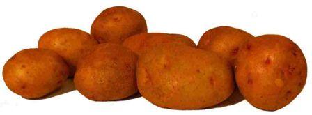 Семена среднепоздего картофеля